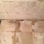 Moldy bathroom tiles.