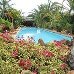 Garden Route Game Lodge Foto
