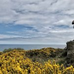 Photo de Howth Head