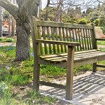 benches spread everywhere to just sit down, enjoy the surroundings & relaxz