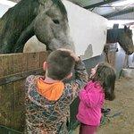 Foto de Muckross Riding Stables B&B