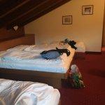 Photo of Hotel Binelli