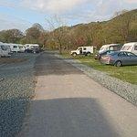 Photo de The Woodlands Caravan Park