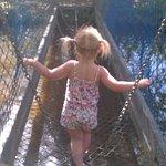 Photo de Camel Creek Adventure Park