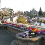 Inner harbour in April.