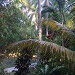 Foto de Sunset at the Palms