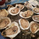 cold, plump, fresh and very delicious raw oysters!!!