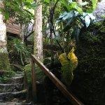 Rupa Wasi Lodge