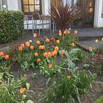 The magic of spring time at Keavil House Hotel Dunfermline