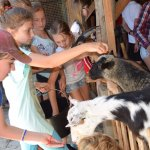 Our TEIP students feeding the goats.