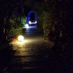 Photo de Turtle Beach Resort