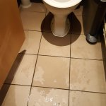 The wet floored toilet.