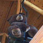 Bear in lift chair