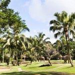 Park Flora & Fauna