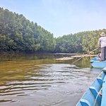 Rowboat to Bat Sanctuary