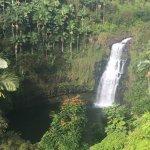 Photo de The Inn at Kulaniapia Falls