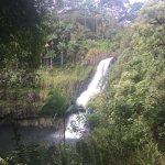 Foto di The Inn at Kulaniapia Falls