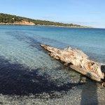 Photo of Spiaggia Spalmatore