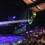 Photo of Mystere by Cirque Du Soleil
