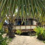 Palm Grove-billede