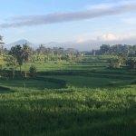 Rice paddy views near the Karsa Cafe