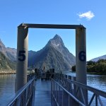 View down Milford Sound from the boarding jetty