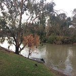 Landscape - BIG4 Riverside Swan Hill Photo