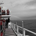 Photo of Elding Adventure At Sea