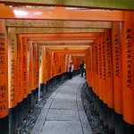 Fushimi Inari. Yes, that's me.