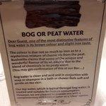 Bog Water bathroom