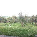 Photo of Canalicchio Di Sopra