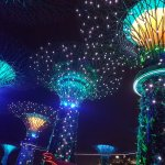 Foto de Gardens by the Bay