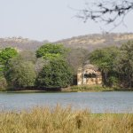 Photo de Ranthambore National Park