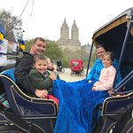 NYC Horse Carriage Rides Foto