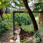 Photo de Albany Bali Style Accommodation