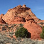 White Pocket and South Coyote Buttes