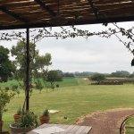 Vista dos vinhedos do restaurante da Posada