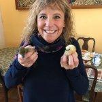 Baby chicks and ducks!