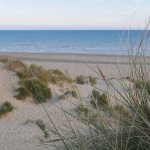 Dune at Camber Sands beach