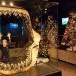 Holiday Trees at the Aquarium