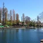 Photo de Inokashira Park