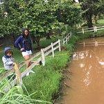 Pescando nos lagos da Vila Chico
