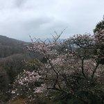 Photo de Kakimotoya