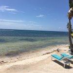 Foto de Blackbird Caye Resort