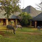 Royal Kruger Lodge Foto