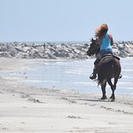 Walk Trot Canter ride for advanced riders