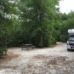 Rainbow Springs State Park, Loop A site #50