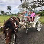 Buggy ride around Playa Dorada