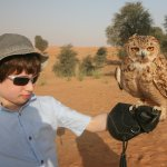 Xbox the Desert Eagle Owl