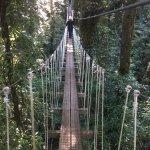 bridge, so cool!